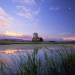 lee-metcalf-national-park-scenic